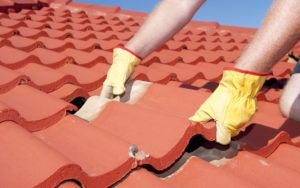 Worker Replacing Shingle to Prepare Roof for Spring